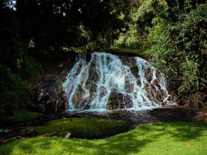 Wald Mount Meru Trekking
