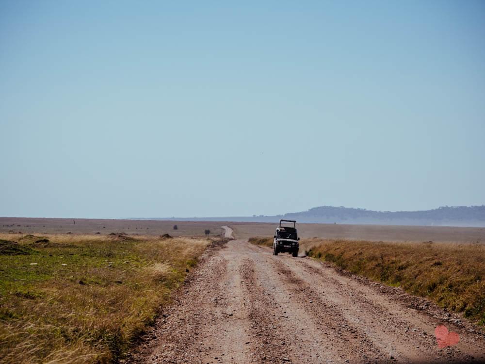 Straße in der Serengeti
