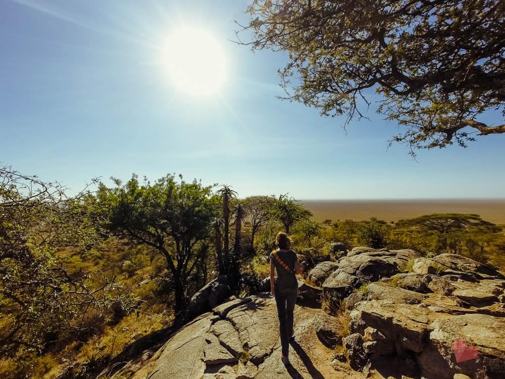 Aussichtspunkt beim Serengeti Park Eingang