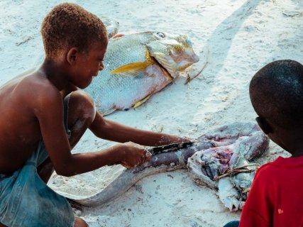 Fisch in Matemwe