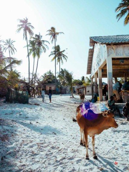 Matemwe, Sansibar