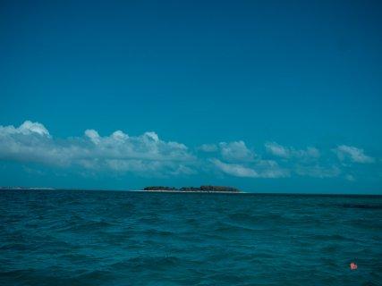 Schnorchel Tour zum Mnemba Atoll