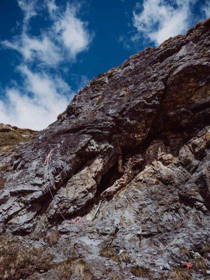 Baumstamm im Fels bei der Sesvenna Hütte